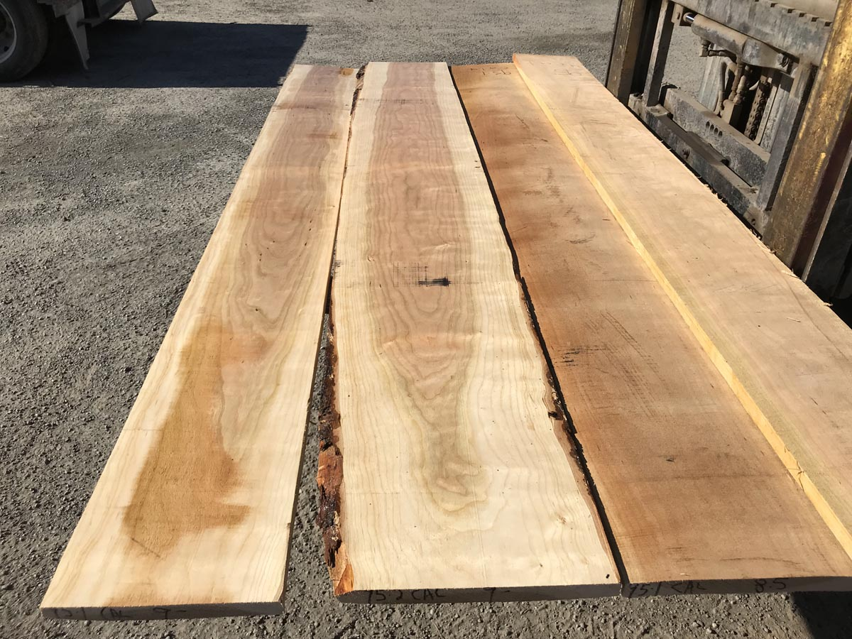 4/4 calico cherry matched set