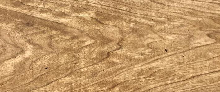 Butternut Lumber Species