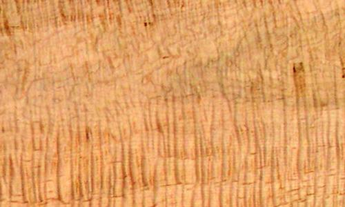 Tiger Maple Lumber