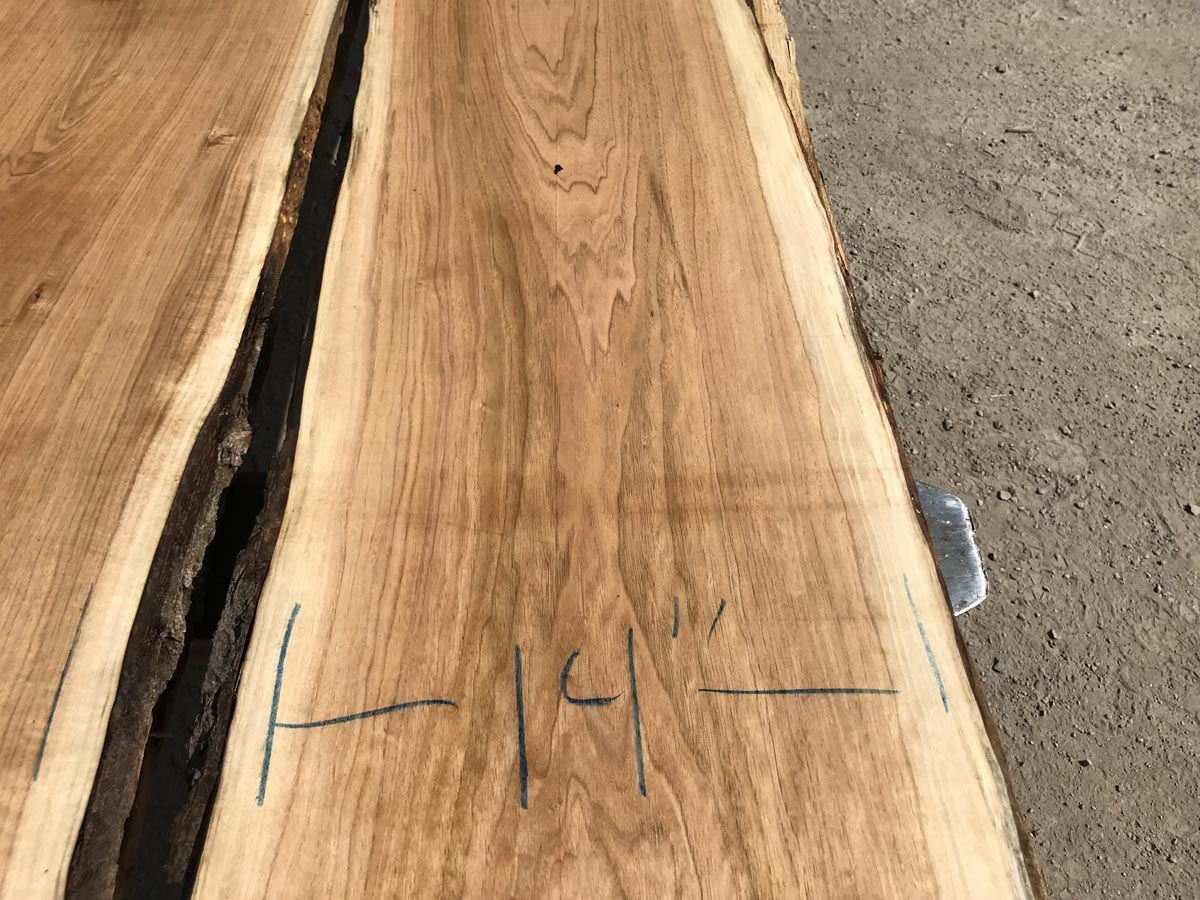 live edge butternut matched set