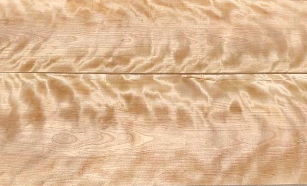flame birch banner
