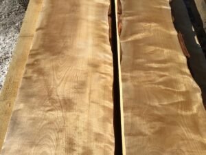 premium lumber, high quality lumber, flame birch
