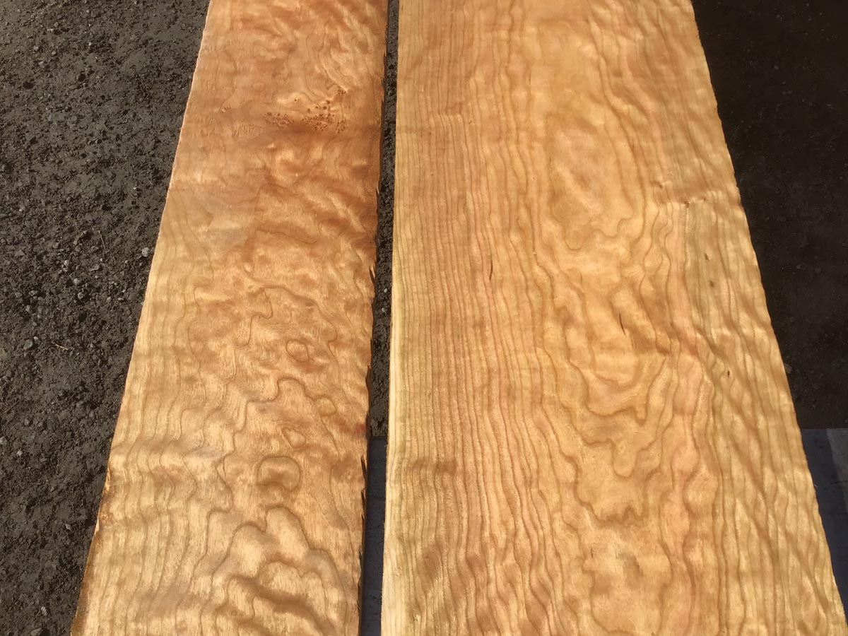 curly cherry lumber, premium curly cherry, high quality lumber