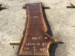 walnut slab, live edge walnut, unsteamed walnut, wooden tops