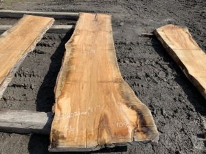 live edge ash, ash slab, hardwood tops, tabletops