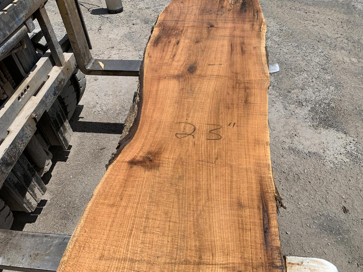live edge butternut slab, wooden tops, hardwood tops