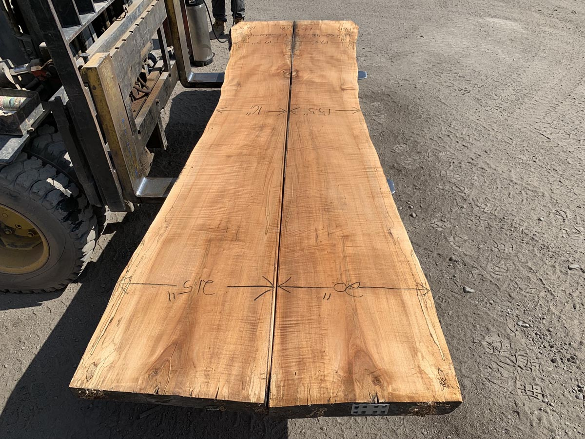 spalted maple slab, wooden tops, premium lumber, 10/4