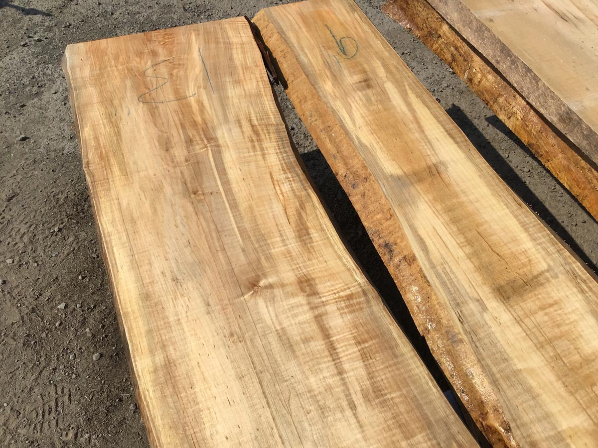 rustic maple lumber, live edge maple lumber, wooden tops