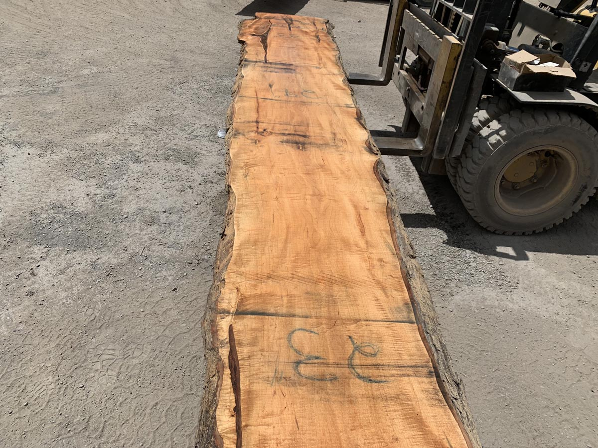 tiger maple slab, tiger maple live edge, premium lumber, high quality lumber