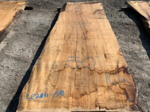 live edge maple slab, hardwood lumber, wooden tops