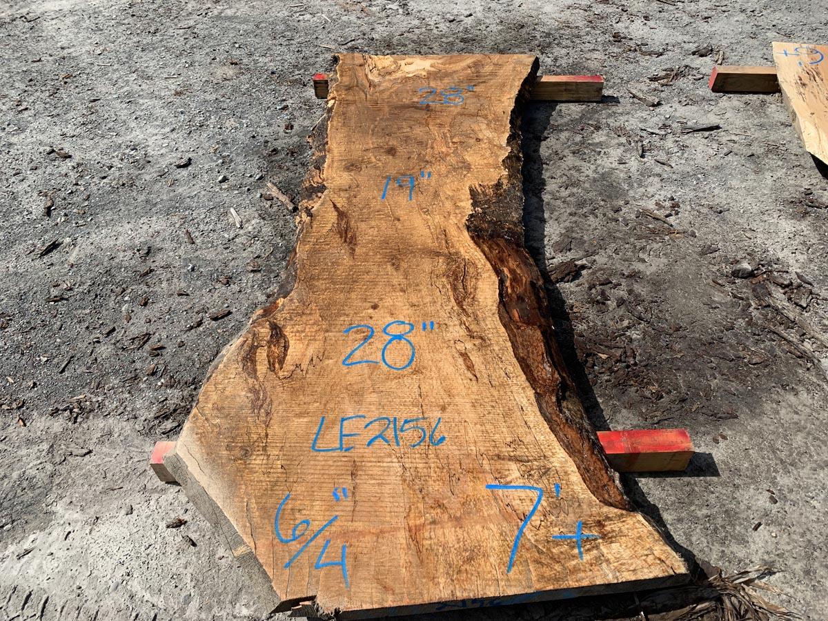 live edge spalted maple slab, rustic slab, hardwood lumber